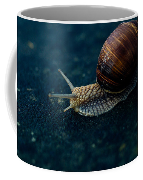 Blue Coffee Mug featuring the photograph Blue Snail by Pati Photography