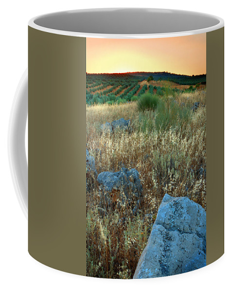 Iznajar Coffee Mug featuring the photograph blue stones amongst the olive groves near Iznajar Andalucia Spain by Mal Bray