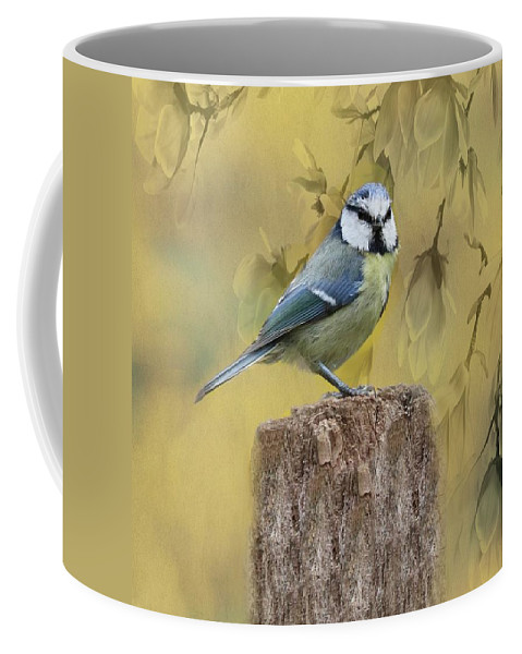Blue Tit Coffee Mug featuring the photograph Blue Tit Bird II by Movie Poster Prints