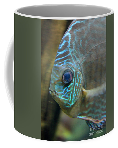 Blue Fish Coffee Mug featuring the greeting card Blue Tropical Fish by Carol Groenen