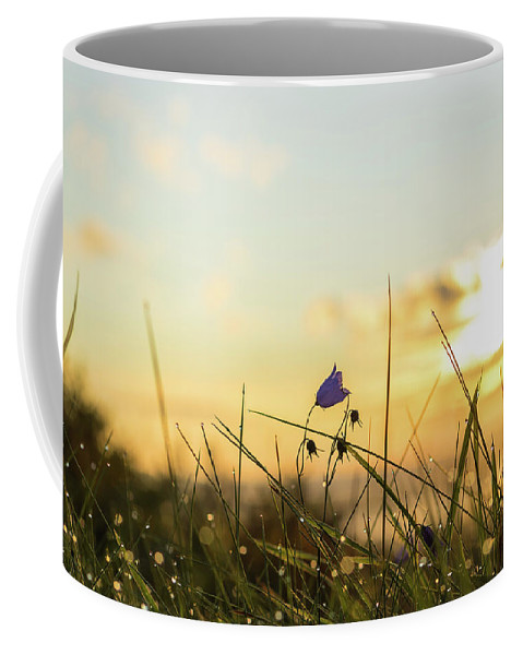 Autumn Coffee Mug featuring the photograph Bluebell In The Sunrise by Andreas Hoff