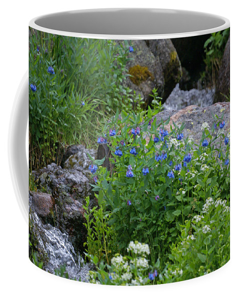 Wildflowers Coffee Mug featuring the photograph Bluebells by Heather Coen