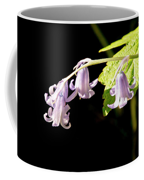 Bluebells Coffee Mug featuring the photograph Bluebells Under The Sun Ray. by Elena Perelman