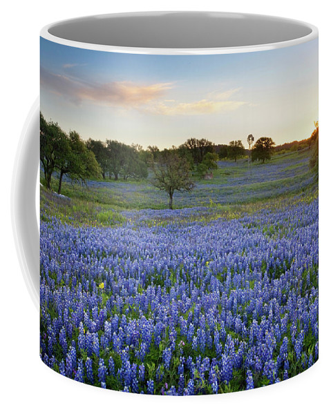 Bluebonnets Coffee Mug featuring the photograph Bluebonnet Sunrise And A Windmill In Texas 1 by Rob Greebon