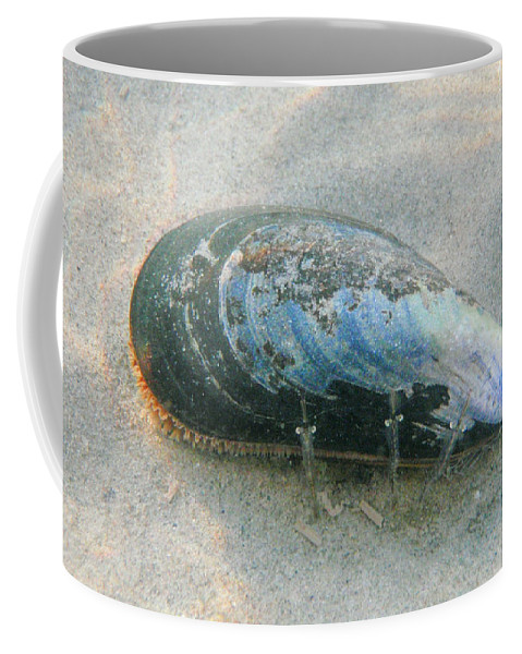 Shell Coffee Mug featuring the photograph Blues Brothers by Are Lund