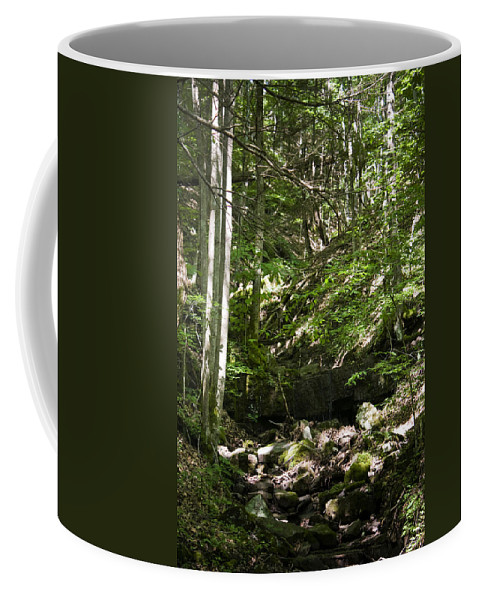 Bluestone Coffee Mug featuring the photograph Bluestone State Park Mountain Stream West Virginia by Teresa Mucha