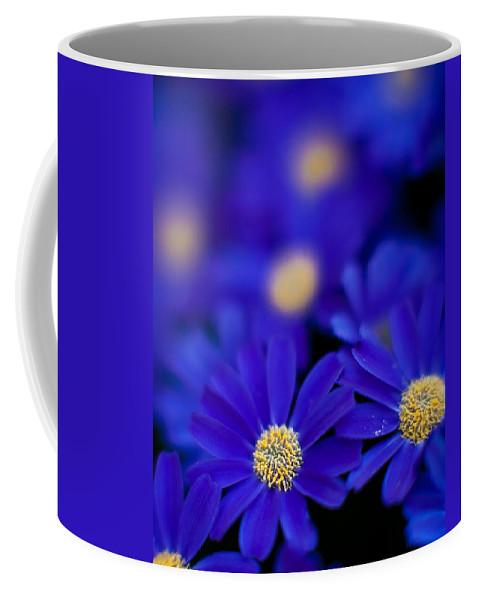 Flower Coffee Mug featuring the photograph Bluey Gerbera by Mike Reid