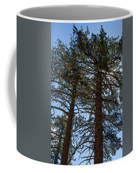 Landscape Coffee Mug featuring the photograph Bluff Lake Ca Through The Trees 3 by Chris Brannen