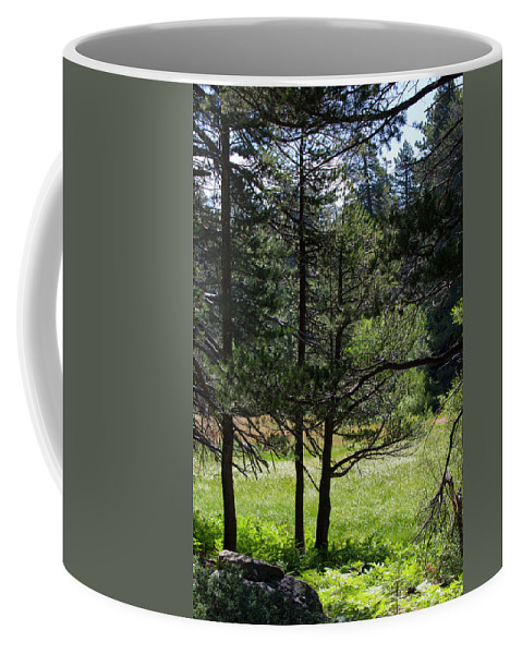 Landscape Coffee Mug featuring the photograph Bluff Lake Ca Through The Trees 8 by Chris Brannen
