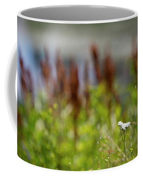 Wild Flowers Coffee Mug featuring the photograph Bluff Lake Ca Wild Flowers 1 by Chris Brannen