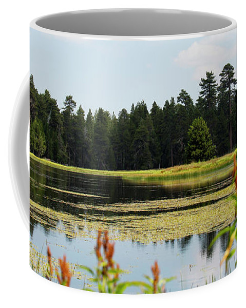 Landscape Coffee Mug featuring the photograph Bluff Lake Ca Wild Flowers 12 by Chris Brannen