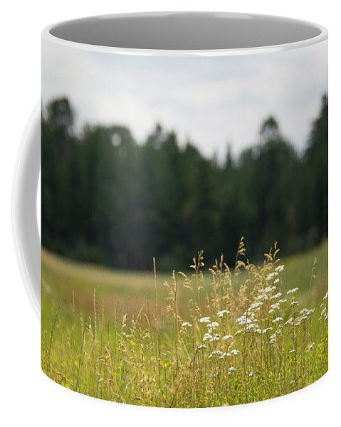 Landscape Coffee Mug featuring the photograph Bluff Lake Ca Wild Flowers 5 by Chris Brannen