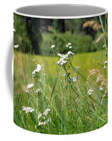 Wild Flowers Coffee Mug featuring the photograph Bluff Lake Wild Flowers 1 by Chris Brannen