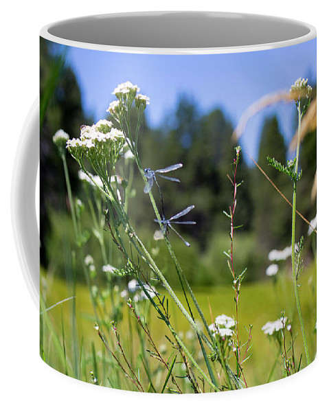 Wild Flowers Coffee Mug featuring the photograph Bluff Lake Wild Flowers 2 by Chris Brannen