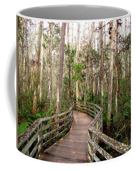 Boardwalk Coffee Mug featuring the photograph Boardwalk Through Corkscrew Swamp by Barbara Bowen