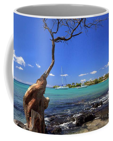 Anaehoomalu Bay Coffee Mug featuring the photograph Boats At Anaehoomalu Bay by James Eddy
