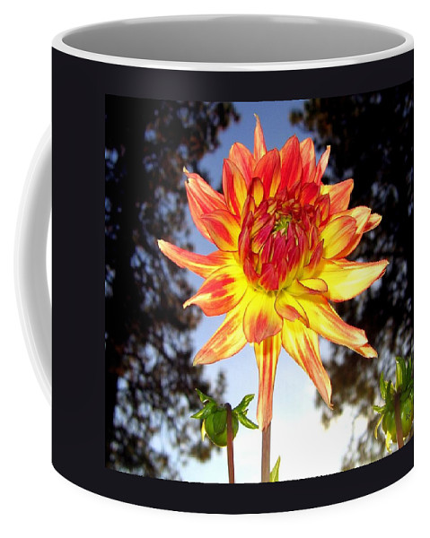 Dahlia Coffee Mug featuring the photograph Bold And Beautiful by Will Borden