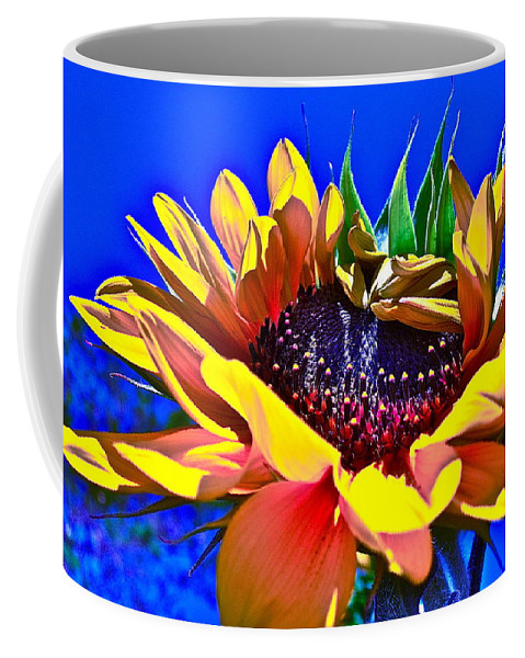 Photographs Coffee Mug featuring the photograph Bold by Gwyn Newcombe