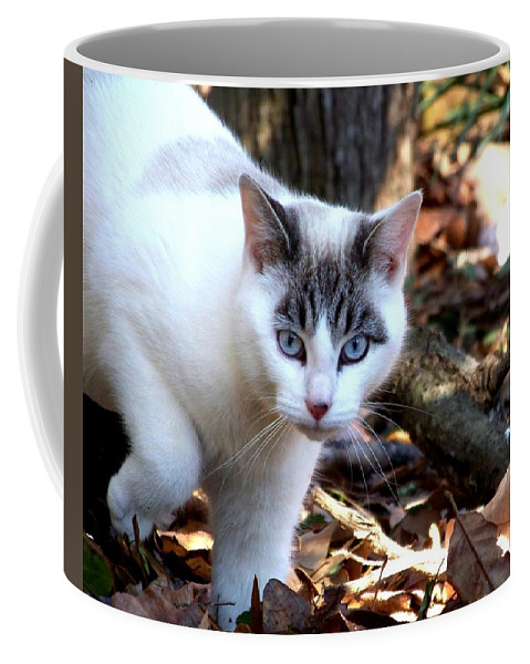 Cat Coffee Mug featuring the photograph Boldly by Jai Johnson