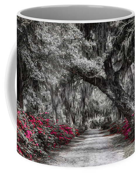 Joan Carroll Coffee Mug featuring the photograph Bonaventure Cemetery Bw by Joan Carroll