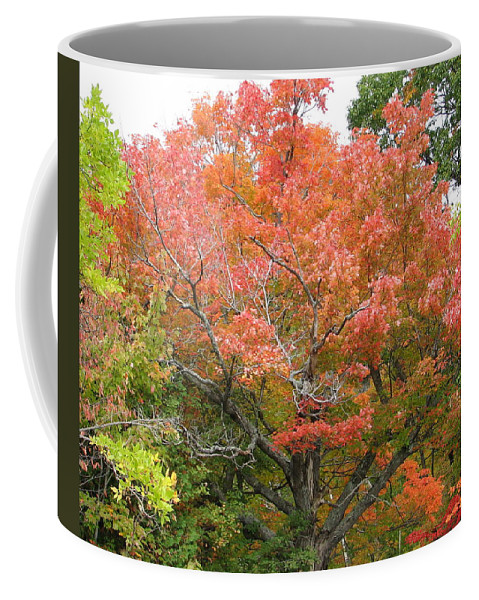 Fall Coffee Mug featuring the photograph Bonfire by Kelly Mezzapelle