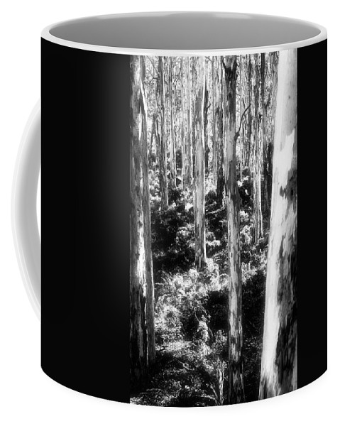 Boranup Forest Coffee Mug featuring the photograph Boranup Ghosts by Totally Talliesen