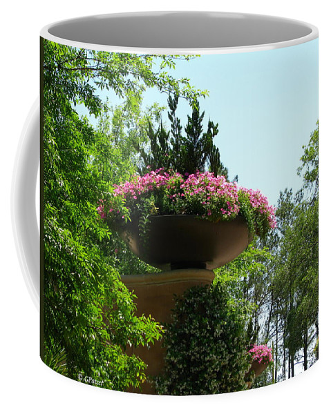 Patzer Coffee Mug featuring the photograph Botanical Sky by Greg Patzer
