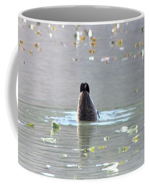 Bottoms Up Coffee Mug featuring the photograph Bottoms Up by Patti Whitten
