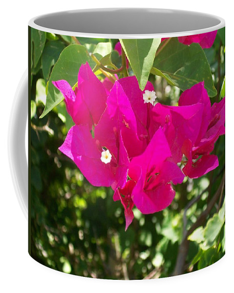Bougainvillea Coffee Mug featuring the photograph Bougainvillea Boogey by Laurette Escobar