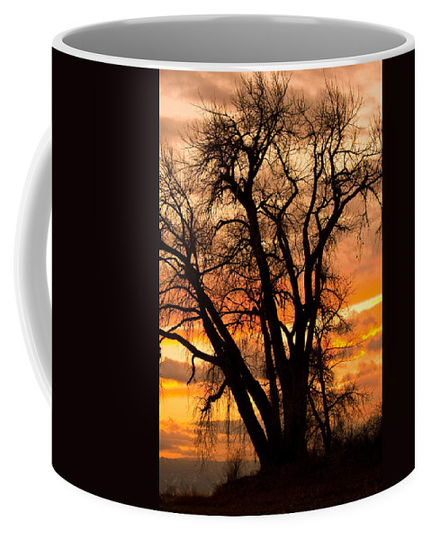 Sunsets Coffee Mug featuring the photograph Boulder County Sunset by James BO Insogna
