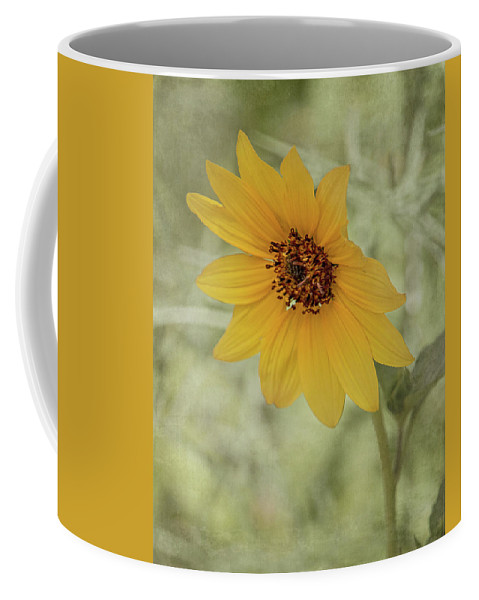 Beautiful Coffee Mug featuring the photograph Bowing To The Sun by Teresa Wilson