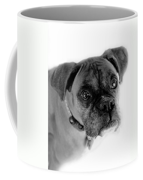 Boxer Coffee Mug featuring the photograph Boxer Dog by Marilyn Hunt