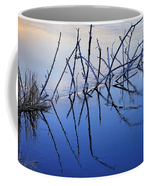 Bend Coffee Mug featuring the photograph Branch Reflections 484 by Jerry Sodorff