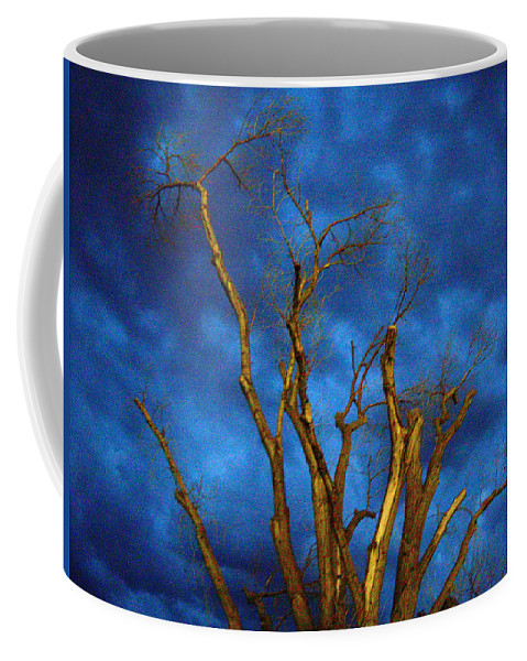 Blue Coffee Mug featuring the photograph Branches Against Night Sky H by Heather Kirk