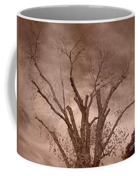 Sepia Coffee Mug featuring the photograph Branches Against Sepia Sky H  by Heather Kirk