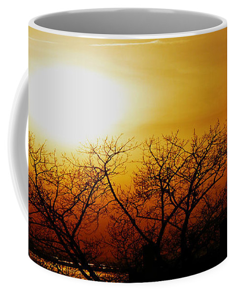 Landscape Coffee Mug featuring the photograph Branches by Kendall Eutemey