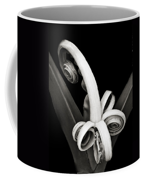 Plant Coffee Mug featuring the photograph Brand New Agave by Marilyn Hunt