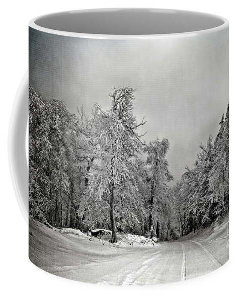 Snow Coffee Mug featuring the photograph Break In The Storm by Lois Bryan