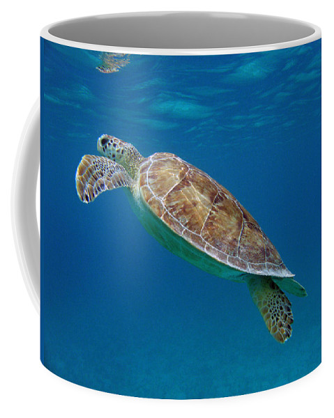 Green Sea Turtle Coffee Mug featuring the photograph Breathe Green by Kimberly Mohlenhoff