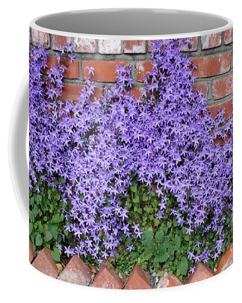 Blue Flowers Coffee Mug featuring the photograph Brick Wall With Blue Flowers by Carol Groenen