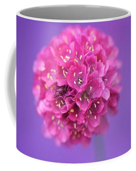 Interior Design Coffee Mug featuring the photograph Bridesmaid by Lisa Knechtel