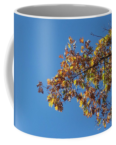 Branch Coffee Mug featuring the photograph Bright Autumn Branch by Michelle Miron-Rebbe