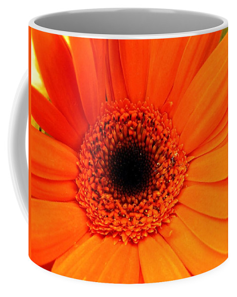 Flower Coffee Mug featuring the photograph Bright Red by Rhonda Barrett