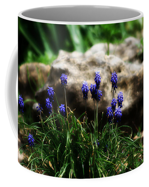 Flowers Coffee Mug featuring the photograph Bring on the purple by Toni Hopper