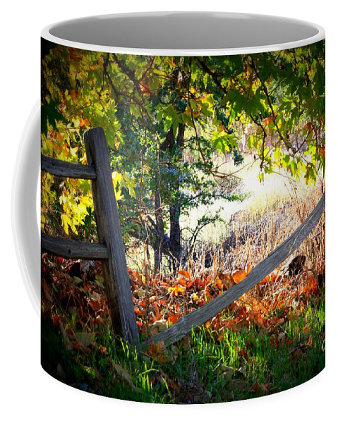 Autumn Coffee Mug featuring the photograph Broken Fence In Sycamore Park by Carol Groenen