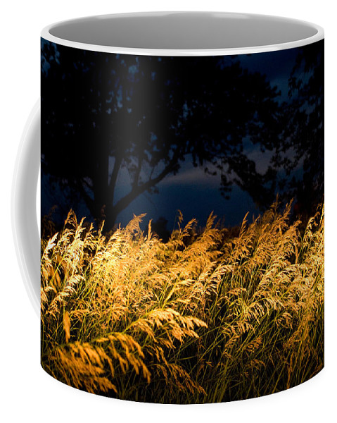 Photography Coffee Mug featuring the photograph Brome Grass In A Field Near Princeton by Joel Sartore