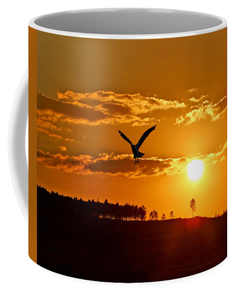 Osprey Coffee Mug featuring the photograph Bronze Sunset by Adele Moscaritolo
