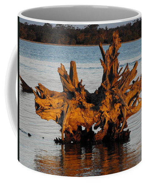 Wood Coffee Mug featuring the photograph Bronzed Wood by Marlene Challis