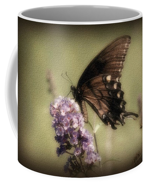 Butterfly Coffee Mug featuring the photograph Brown And Beautiful by Sandy Keeton