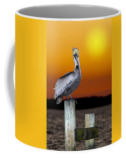 Brown Pelican Coffee Mug featuring the photograph Brown Pelican by Janet Fikar